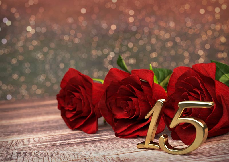 festa 15 anos rosas